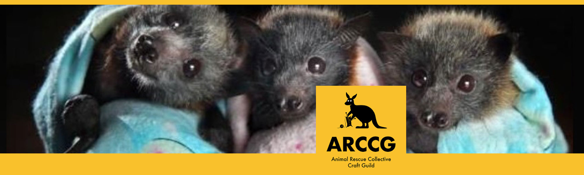 Animal Rescue Sewing Workshop