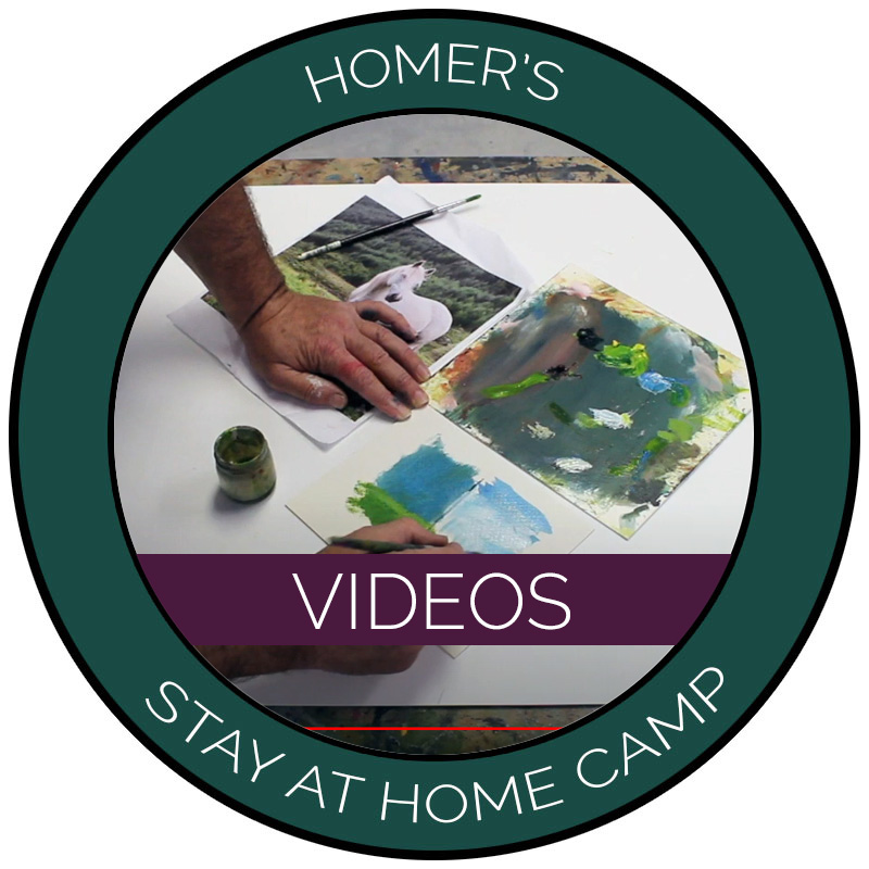 Homer's Stay at Home Camp Videos